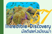 Incredible Discovery มัลดีฟแห่งเมียนม่า