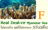 Real Deal VIP Myanmar Sea 3วัน2คืน